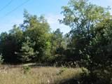 30 Acres Quarterline Road - Photo 6