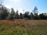 30 Acres Quarterline Road - Photo 8