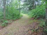 13184 Sweet Trail - Photo 5