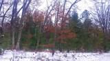 PAR 3 Freesoil - Photo 3