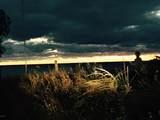 3861 Lakeview Drive - Photo 47
