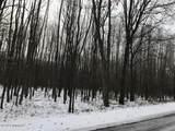 10723 Dobbyn Drive - Photo 3