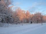 3325 Autumn Trail - Photo 6