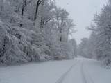 1725 Westview Drive - Photo 7