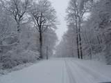 1725 Westview Drive - Photo 8