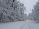 1671 Westview Drive - Photo 7