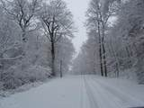 1671 Westview Drive - Photo 8