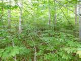 5 Acres Cadillac Highway - Photo 13