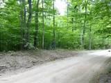5 Acres Cadillac Highway - Photo 4
