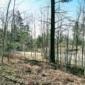 2.16 ACRES Indigo Trail - Photo 11