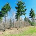 2.16 ACRES Indigo Trail - Photo 17
