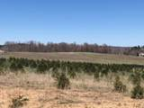 79 acres Lindeman Rd - Photo 13