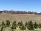 79 acres Lindeman Rd - Photo 15