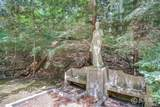 6715 Indian Pipe Circle - Photo 16