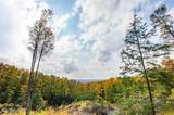 Lot 7 High Pines Trail - Photo 10