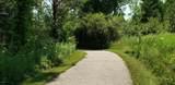 6158 Essex Lane - Photo 30