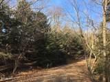 Timber Lane - Photo 1