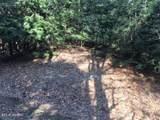 Timber Lane - Photo 4