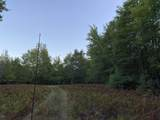 80  Acres Healy Lake Road - Photo 10