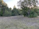 80  Acres Healy Lake Road - Photo 12