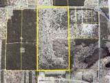 80  Acres Healy Lake Road - Photo 18
