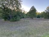 80  Acres Healy Lake Road - Photo 3