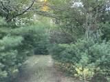 80  Acres Healy Lake Road - Photo 6
