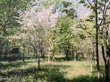Vl Cr 687 - Photo 3