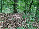 112 Logging Trail - Photo 15