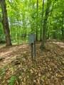 112 Logging Trail - Photo 9
