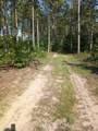 13125-30 acres Big Four Road - Photo 44
