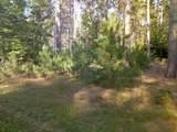 13125-30 acres Big Four Road - Photo 59