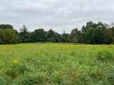 10526 Spring Arbor Road - Photo 43