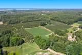 2.8 acres Taylor - Photo 4