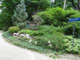 Lot 5 Forest Trail Circle - Photo 1