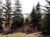 3001 Indian Point Road - Photo 53