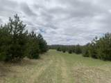40-Acres Olson Road - Photo 1