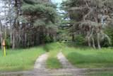 14161 New Millpond Road Road - Photo 4