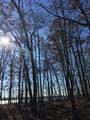Parcel A East Suwanee Trail - Photo 5