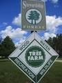 13125-30 acres Big Four Road - Photo 63