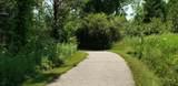 11564 Norfolk Drive - Photo 41