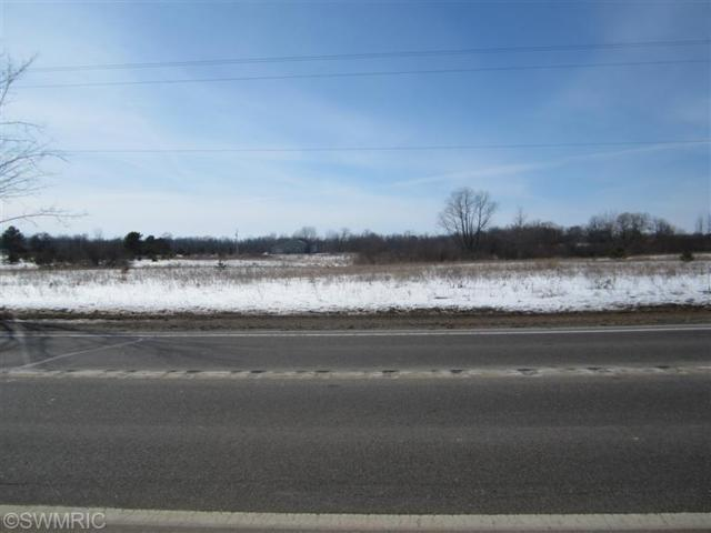 5719 S Warner Avenue, Fremont, MI 49412 (MLS #15003835) :: Carlson Realtors & Development