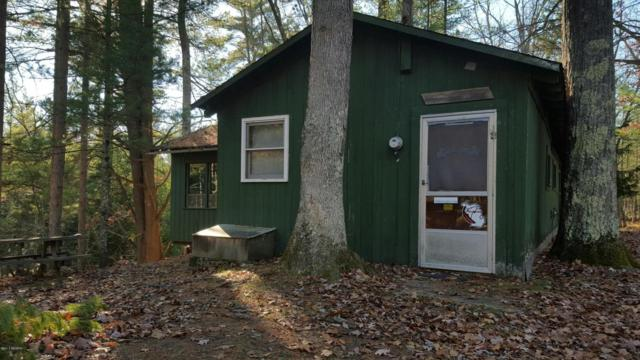 11681 Pomeroy Springs Parcel B, Irons, MI 49644 (MLS #15058721) :: 42 North Realty Group
