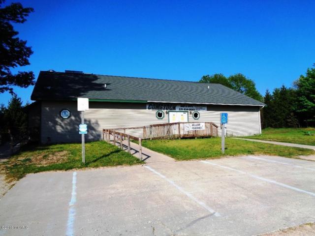 6250 Comstock Avenue, Hesperia, MI 49421 (MLS #16034882) :: Deb Stevenson Group - Greenridge Realty