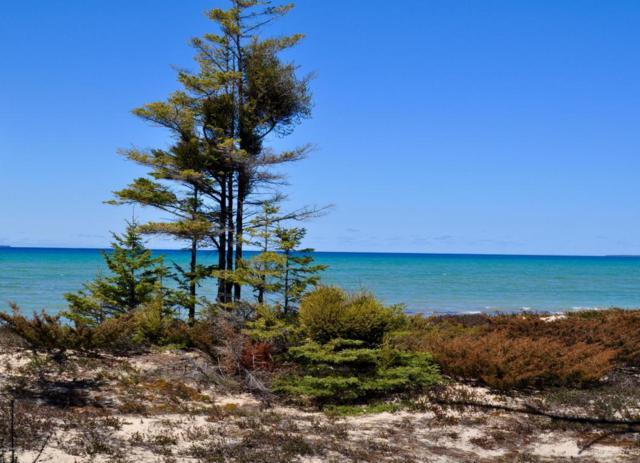 35259 Bonners Landing Road, Beaver Island, MI 49782 (MLS #16038035) :: Carlson Realtors & Development