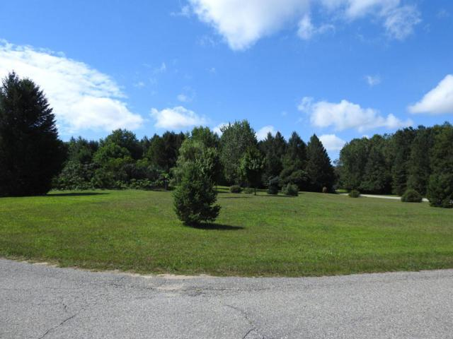 Parcel H-1 Evergreen Trail, Hart, MI 49420 (MLS #16044996) :: JH Realty Partners