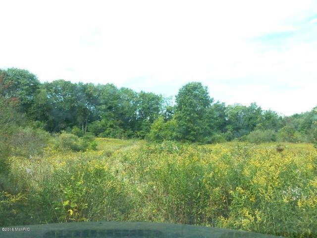 Vac Land W Augusta Drive Drive E, Galesburg, MI 49053 (MLS #17000253) :: JH Realty Partners