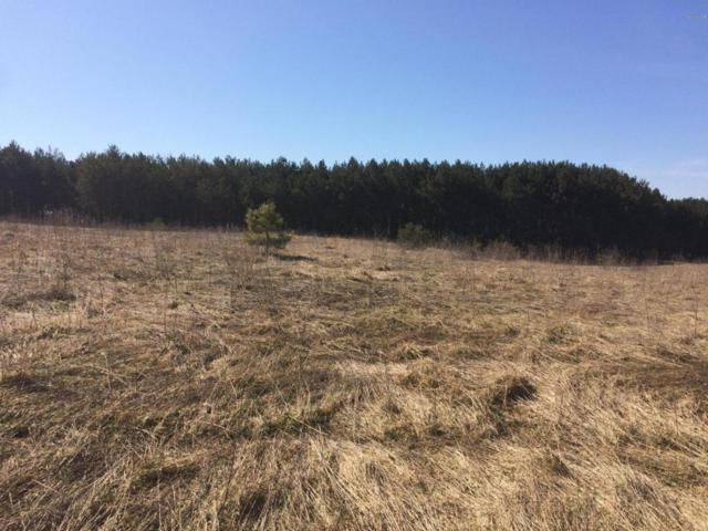Running Buck Parcel 2, Scottville, MI 49454 (MLS #17011651) :: Carlson Realtors & Development