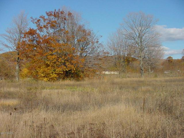 W Buchanan Road, Shelby, MI 49455 (MLS #17011800) :: Carlson Realtors & Development