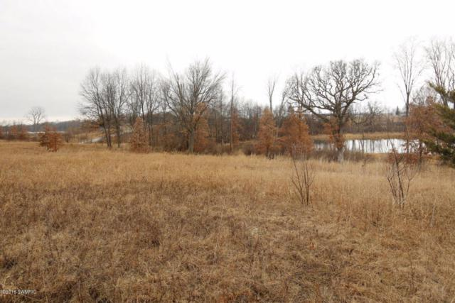 Parcel #C Goodwin Drive, Union City, MI 49094 (MLS #17018034) :: JH Realty Partners
